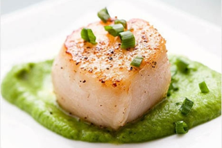 scallop_close_up